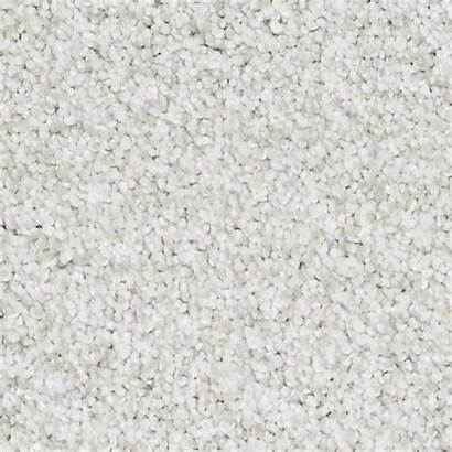 Carpet Texture Shaw Textured Flooring Park Aspen
