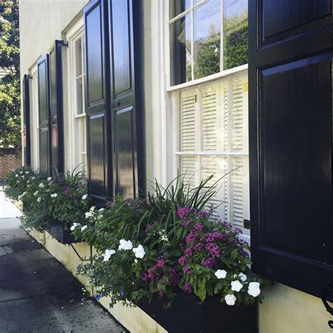 raised panel shutters outdoor window shutters hooks  lattice