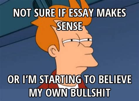 Memes About Writing Papers - essay meme memes