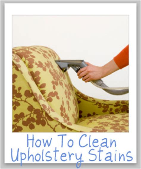 How To Clean Upholstery by How To Clean Upholstery Tips And