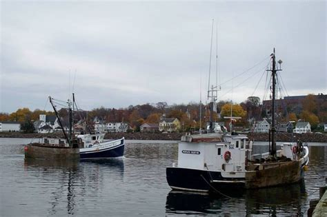 Scallop Boat by Digby Scallop Boats Digby Ns Pins Boats