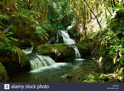 tropical waterfalls stock photos tropical waterfalls