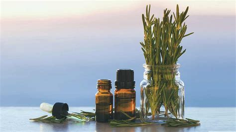 Essential Oils For Varicose Veins Do They Work?
