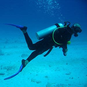 How Much Does It Cost to Go Scuba Diving - How much does cost?