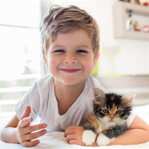 cats pets why children pet facts reasons getty