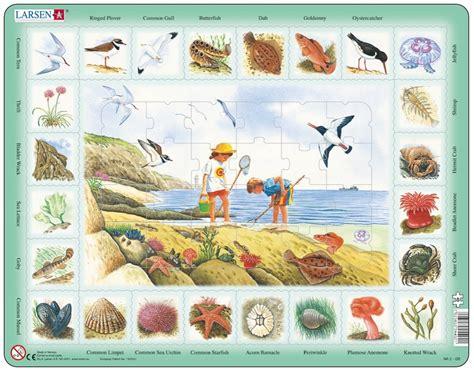 puzzle cadre apprendre l anglais au bord de mer en