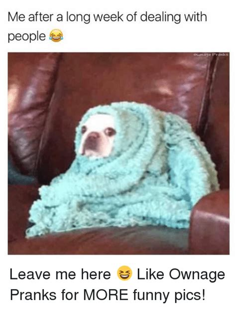 Meme Pics Funny - me after a long week of dealing with people oununage pranks leave me here like ownage pranks