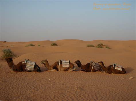 bureau de change fr fonds d écran de tunisie le désert destination tunis