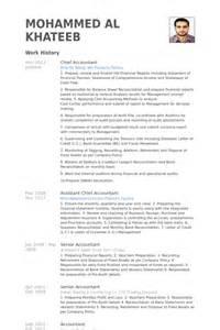 chief curriculum vitae chief accountant resume sles visualcv resume sles database