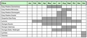 What Season Fruits And Vegetables Chart Fruit And Vegetables Yeoman Group