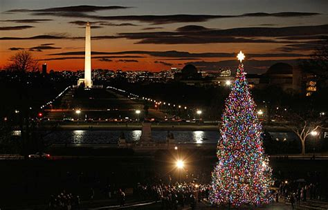 washington dc christmas lights the 10 most amazing christmas trees in the u s