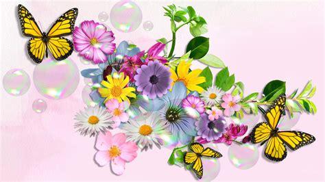 Butterfly Backgrounds Free Download Pixelstalknet