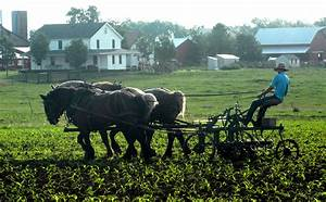 mid missouri old order amish populations soar and expand With amish builders in iowa