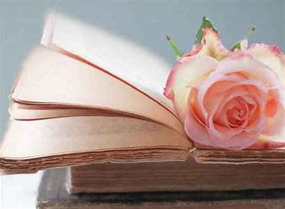 Tabs Romantic Rose Android Google Netbooks