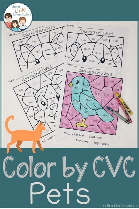 pets color  cvc word distance learning  images