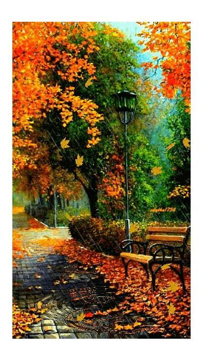 Nature Autumn Fall Gifs Scenery Park Rain
