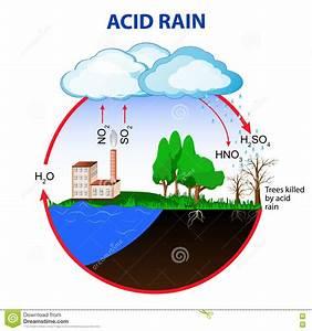 Acid Rain Posters  1079