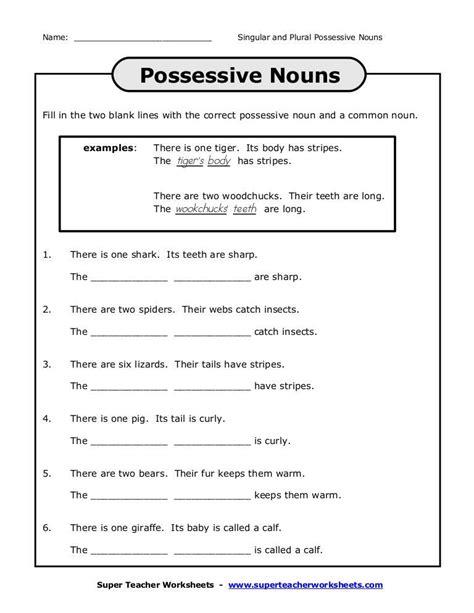 possessive nouns worksheets homeschooldressage