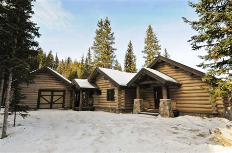 log cabin stain beetle pine log cabin exterior sikkens grey stain beetle