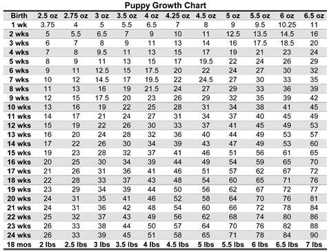 Puppy Weight Chart For Yorkies Yorkies Pinterest