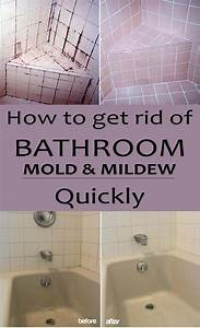 How to get rid of bathroom mold and mildew quickly for How to get rid of bathroom mildew