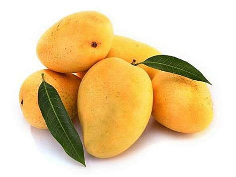 Profitability Of Mangoes & m Yearly Loss