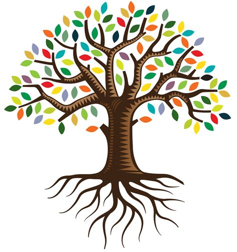 family tree with roots clipart foundations for course city church