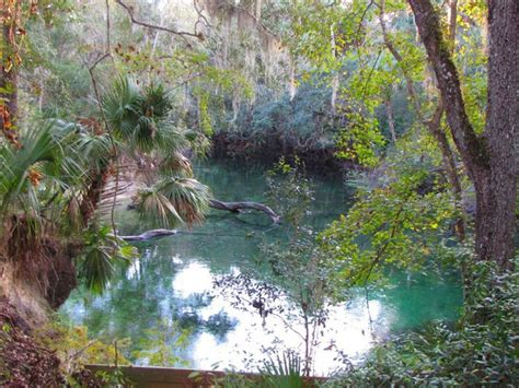 blue spring state park flat water paddling