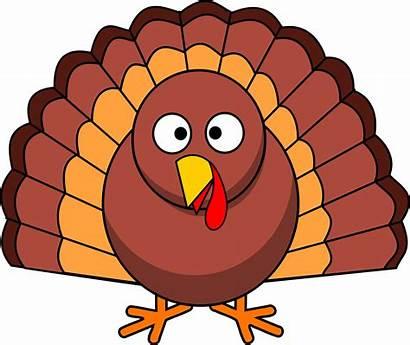 Turkey Thanksgiving Clipart Clip Vector Songs Transparent