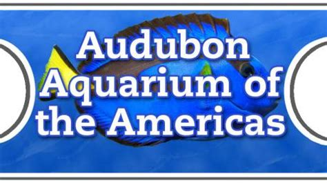 get aquarium tickets for just 10 regularly 19 95 northshore