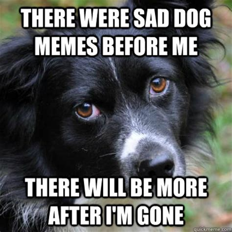 Sad Dog Meme - there were sad dog memes before me there will be more after i m gone misc quickmeme