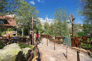 PHOTOS - Step inside new Fantasyland's Enchanted Forest ...
