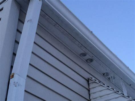 drop dead gorgeous vent bathroom exhaust  soffit