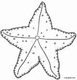 Starfish Coloring Printable Ocean Cool2bkids Sea Template Sheets Printables Fish Spongebob Worksheets Colors Templates Results sketch template