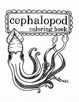 Coloring Squid Printable Cephalopod Octopus Cuttlefish Esty Stuff Squids Mollusc Sewing Super Ocean Similar Jewelry sketch template
