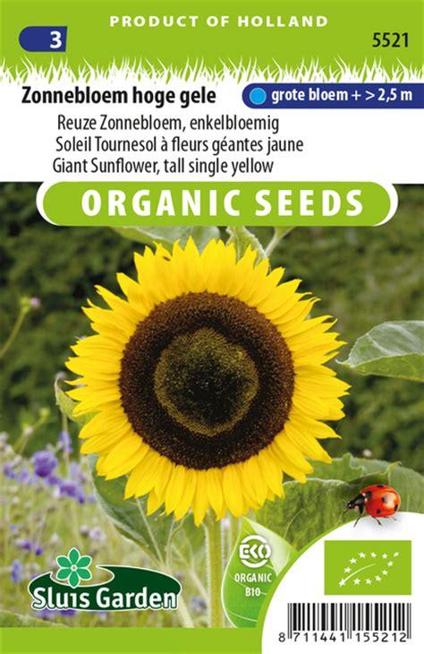 gele hoge bloemen zonnebloem hoge gele eko kopen zaden bestellen vanaf 2 49