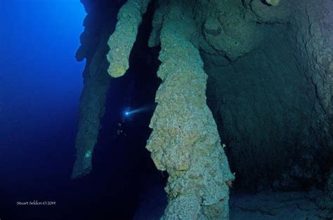 guide  scuba diving blue hole turneffe atoll belize