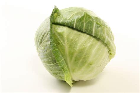 Florida Produce Cabbage Fresh From Florida