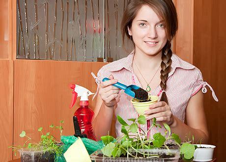 Dārzs uz palodzes: audzējam garšvielas. - Veselīgs uzturs ...