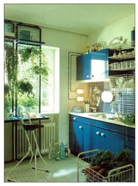 plants  grow   kitchen