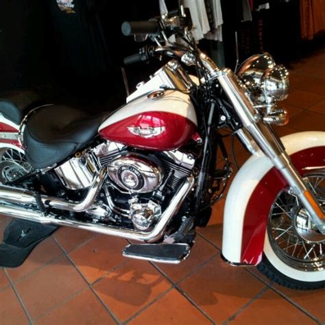 Key West Harley Davidson by Photos At Peterson S Key West Harley Davidson Key West Fl