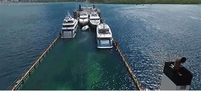 Transport Into Water Yacht Ships Giant Swallow