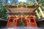 日光/東京の観光公式サイトGO TOKYO