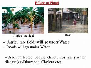 Effects Floods Environment images
