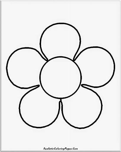 Coloring Simple Flower Easy Sheets Printable Realistic