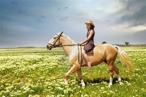 horse tame riding history horseback through ride preview