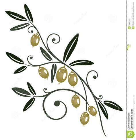 la cuisine d olivier branche d 39 olivier photographie stock libre de droits