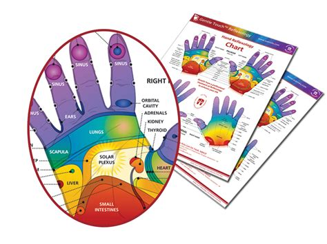 Hand Reflexology Online Course T Hand Reflexology. College Degree For Work Experience. School Of Theology Sewanee Nursing School Nyc. Definition Of Social Network. Bay Window Construction How To File Chapter 7. Average Salary For Ultrasound Tech. Software For Qualitative Research. Iso 27001 Certification Bodies. Simple Iphone App Development
