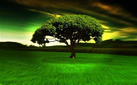 free download 40 cool wallpapers 2013 full hd 1080p