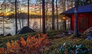 Hd, Wallpaper, Nature, Landscape, Forest, Tree, Sun, Sunset, Autumn, Villa, House, Architecture, Trees, Vila